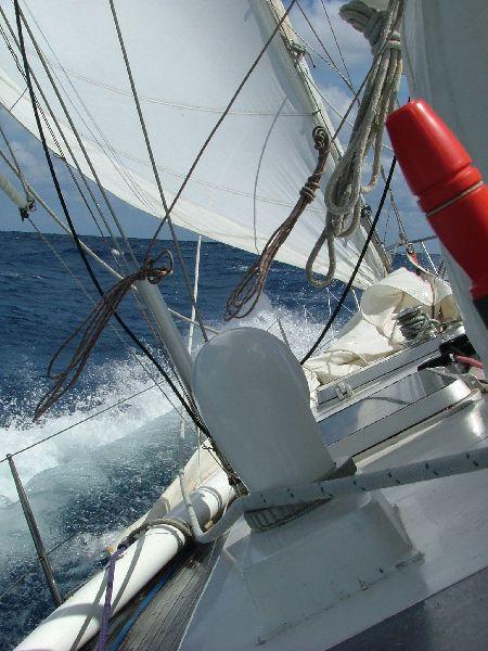 Zarpamos del Caribe de vuelta hacia el Mediterráneo. Ceñimos contra el alisio rumbo hacia Azores, única escala en el Atlantico Norte.